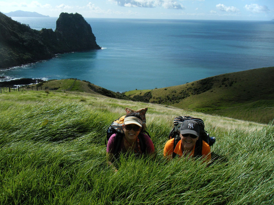 Enjoying the Coromandel Coastal Walkway