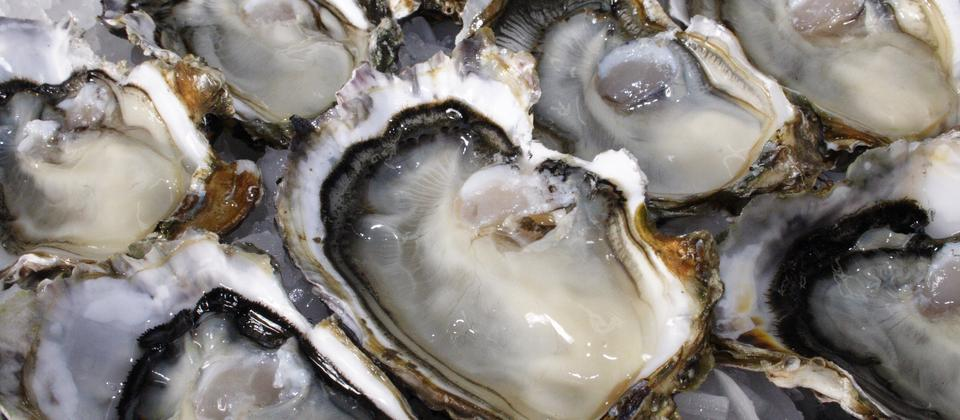 Don't miss trying oysters - a local delicacy