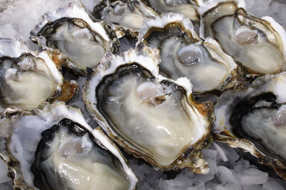 Oysters are a New Zealand specialty and have been enjoyed by the indigenous people for decades.