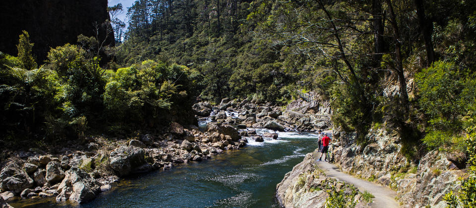Featuring stunning scenery and a rich mining history, the Karangahake Gorge leg of Hauraki Rail Trail is certainly impressive.