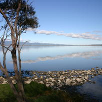 Western shore of Lake Wairarapa