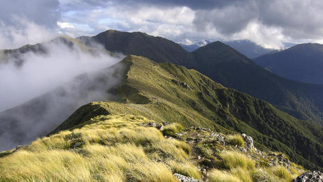 Wairarapa, Walking & hiking in New Zealand | Things to see and do in