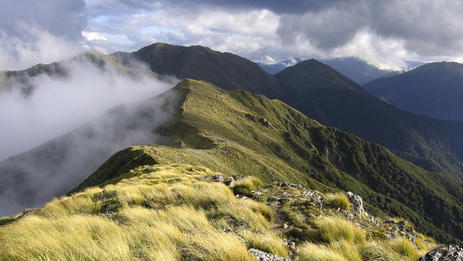 Holdsworth, a section of the Tararua Forest Park. Go hiking & enjoy epic views