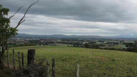 View from the top of Fensham Bush
