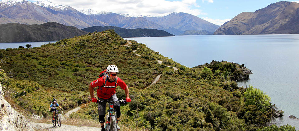Winding hrough bush and beaches and past vineyards and farms, the Glendhu Bay Track is a singletrack mountain bike trail in Wanaka.