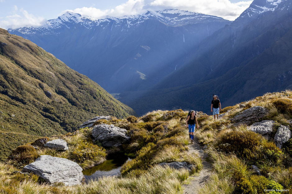 Looking for a fitness challenge with blockbuster views? Try the French Ridge Track.