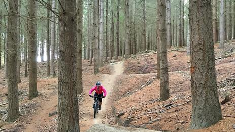 Enjoy a smorgasbord of undulating pine forest trails within freewheeling distance of Wanaka.