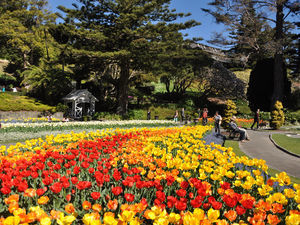 Botanical Gardens in spring
