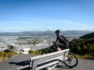 Cyclist overlooking petone