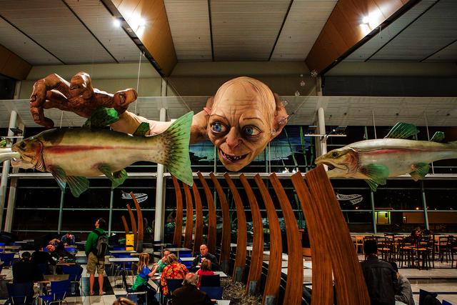 Maskapai Bandara Di Selandia Baru Hal Hal Yang Dapat Dilihat Dan