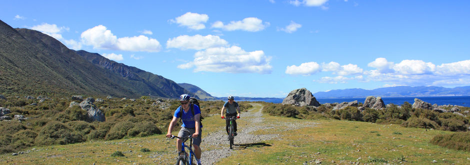 The Remutaka Cycle Trail is a great way to explore the landscapes and history of the Wellington region.