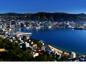 Welly sized city
