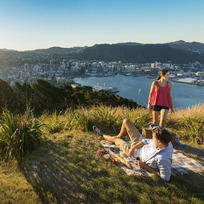 Enjoy fantastic city and harbour views from Mount Victoria in Wellington.