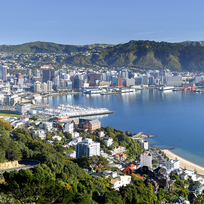 Wellington City lies on a sparkling harbor.