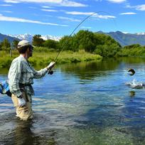Fly fishing gentle waters like Spring Creek requires a delicate touch that will test and reward your skill