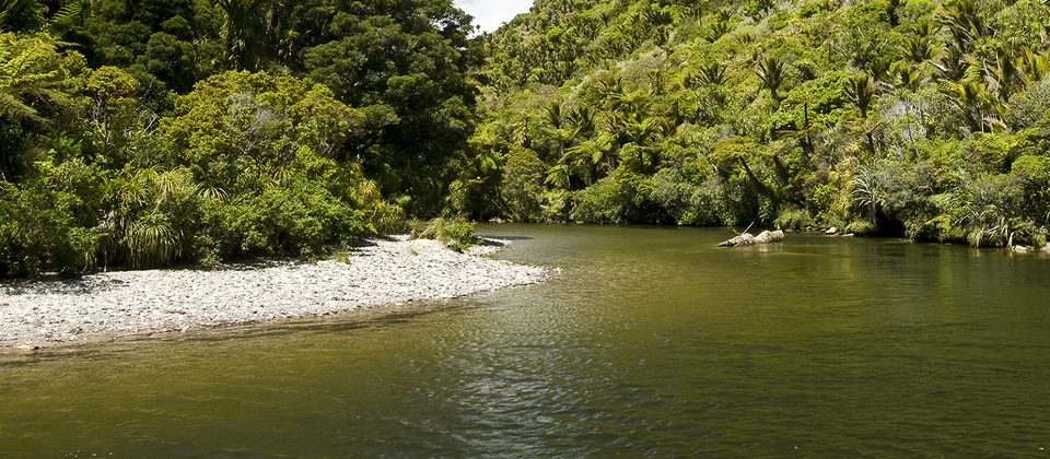 The Pororari River in Punakaiki