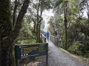 Lake Matheson Walk