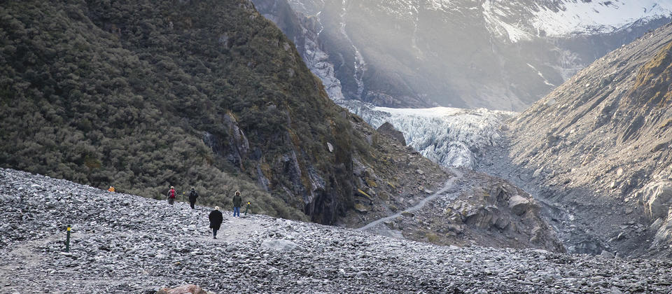 Fox Glacier/Te O Tuawe Valley Walk