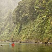 Take a guided canoe journey of Whanganui River.