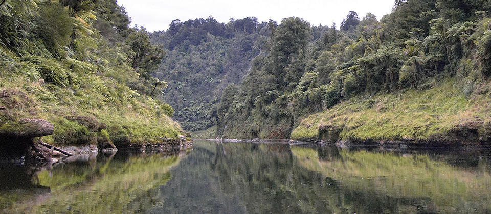 In early times there were Maori villages along the length of the sheltered Whanganui River valley.