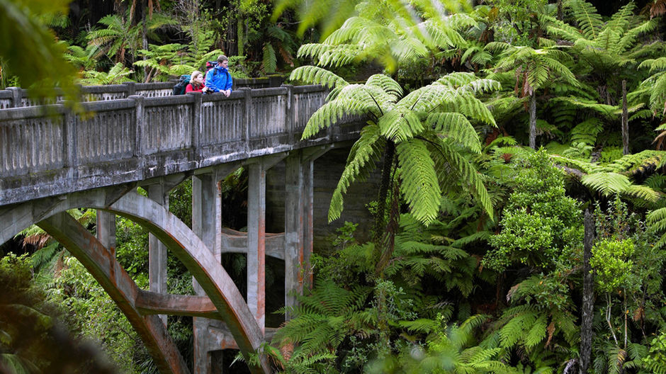 Bridge to Nowhere, Whanganui National Park