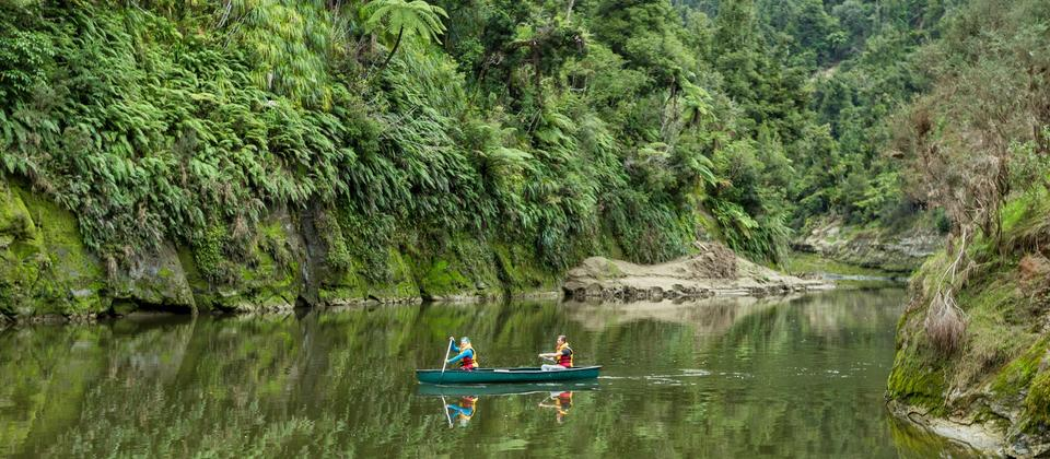Kayak or canoe the Whanganui River