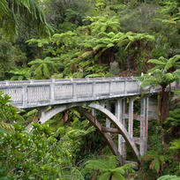 Discover the mysterious Bridge to Nowhere in Whanganui National Park