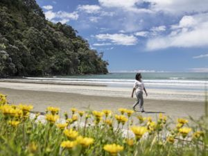 Heather Greenwood Davis walks along Ohope Beach