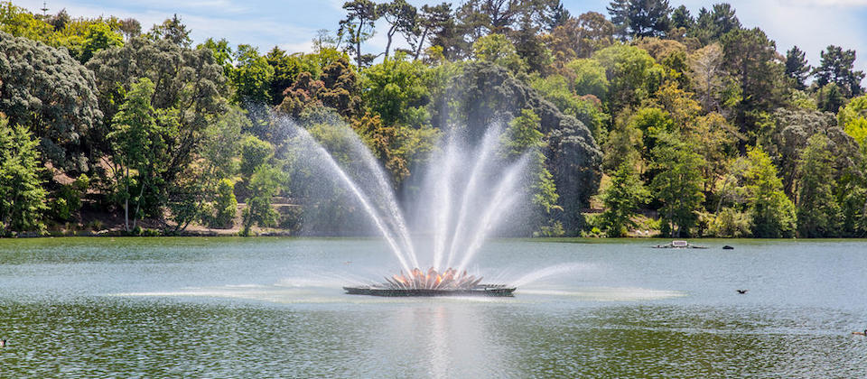 Virginia Lake Fountain