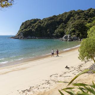 Te Pukatea Bay, Abel Tasman