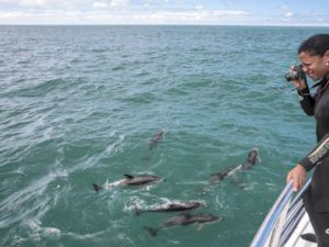 Heather Greenwood Davis swims with dusty dolphins in Kaikoura