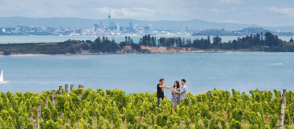 Come and taste New Zealand's food and wine. Once you do, we guarantee you'll never forget it. Learn more: http://www.newzealand.com/int/food-and-wine/