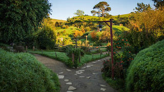 hobbiton cutting