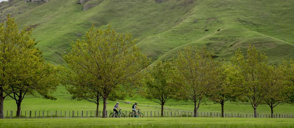 Explore the West Coast Wilderness, Alps 2 Ocean and Hawke's Bay trails.