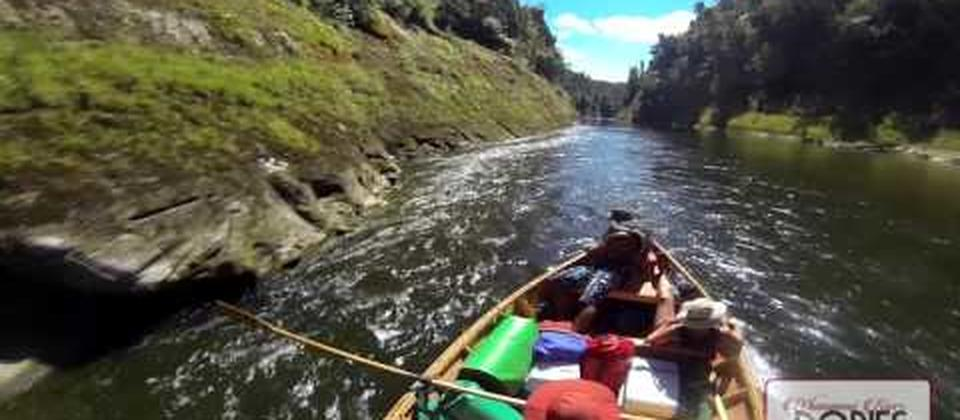 Experiencing the Beautiful Whanganui River in a Dory