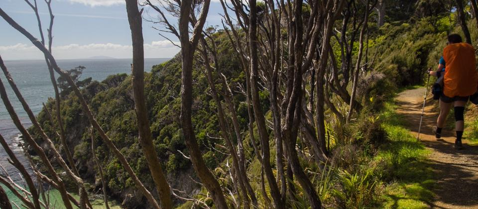 The Rakiura Track on Stewart Island is one of the New Zealand Department of Conservation's nine Great Walks.