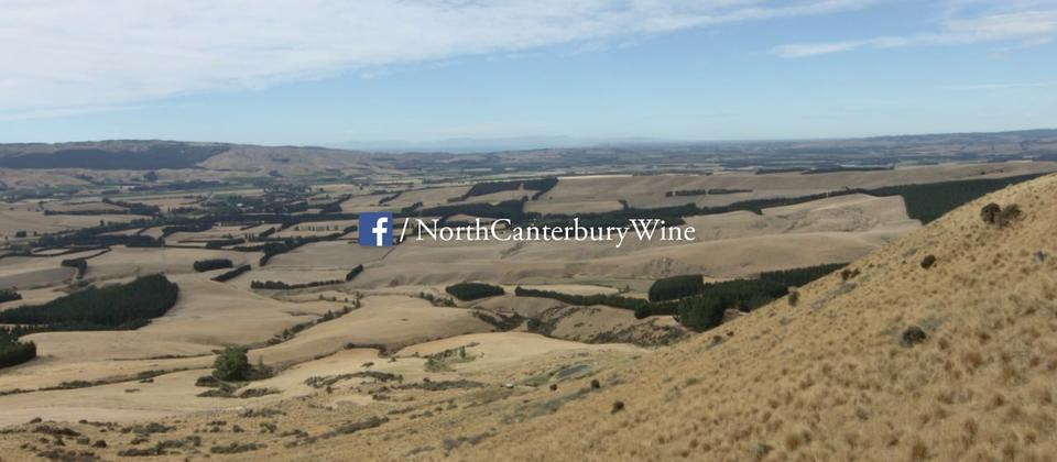 North Canterbury Forage