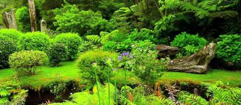 BEAUTIFUL GARDENS ☜Ⓞ☞ NEW ZEALAND