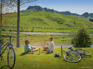Experience the Hawke's Bay on cycle