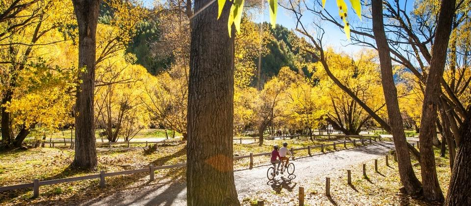 The Queenstown Trail unveils 100+kms of stunning new vistas, hidden ruins, spectacular architecture and world-class food and wine.