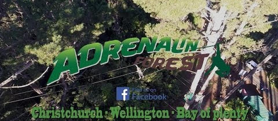 Adrenalin Forest Aerials - How far will you go?