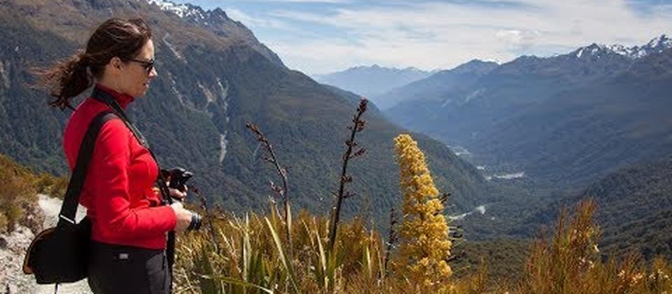 Routeburn Track Guided Walk