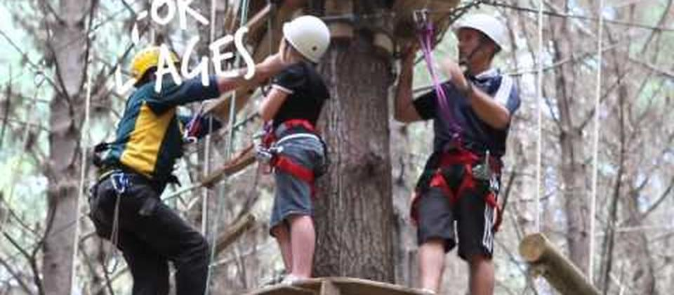 Enter New Zealand's most exciting forest. Climb on amazing circuits from tree to tree. Grab a rope, jump or swing to reach the platforms, it's awesome!
