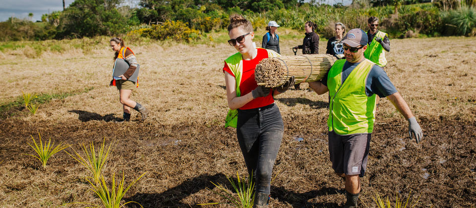 Volunteer abroad in New Zealand with International Volunteer HQ