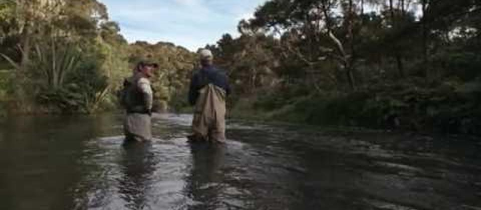 Lake Taupo and its surrounding rivers and streams offer legendary angling experience for both harling, and fly fishing.