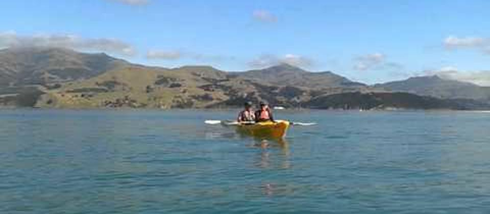 kayaking with dolphins in Akaroa (Akaroa Adventure Centre)